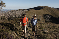 Our pick of the best hiking trails in Australia and New Zealand