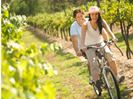 Hire a bike from Peppers Guest House in the Hunter Valley
