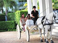 Wedding Carriage Courtesy of Port Douglas Photography - Peppers Beach Club
