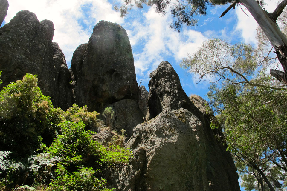 Hikes and walking tracks at the National Parks in Daylesford